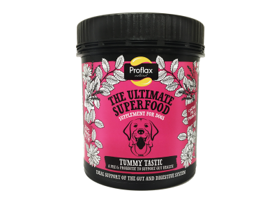Proflax Tummy Tastic Supplement for Dogs