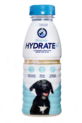 Oralade HYDRATE + Advanced hydration drink for dogs